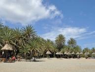 Vai beach Finikodasos Παραλία του Βάι Φοινικόδασος