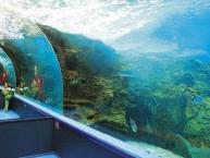 Ενυδρείο Κρήτης Θαλασσόκοσμος Aquarium Crete CretAquarium